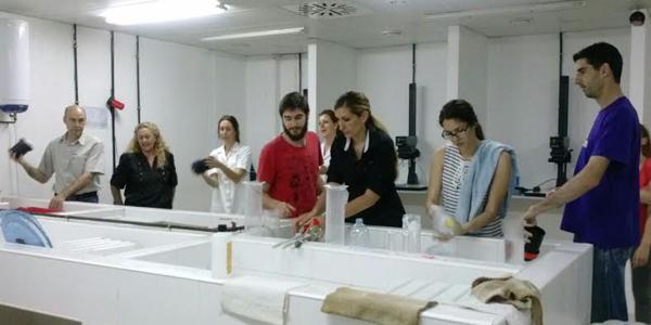 IMST0210-lab